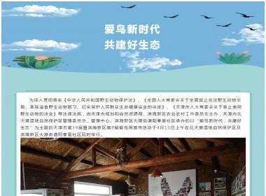 """天津市第39届暨滨海新区第8届""""爱鸟周"""" 宣传活动"""